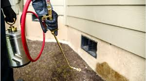 Pest Control Orange County Service Your Best Offense To Deal With Bothersome Pests