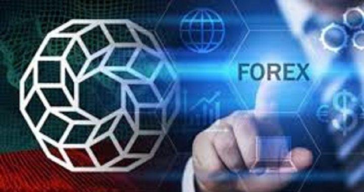 Elija el corredor de Forex adecuado y confiable