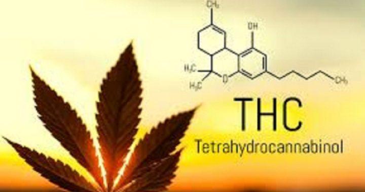 Sykdommer som trenger cannabishjelp